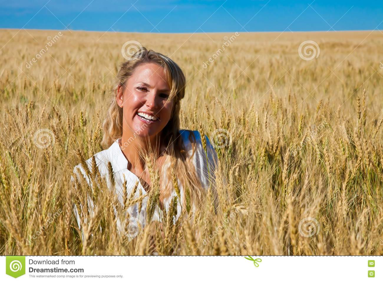 Woman in wheat field stock photo. Image of barley ...