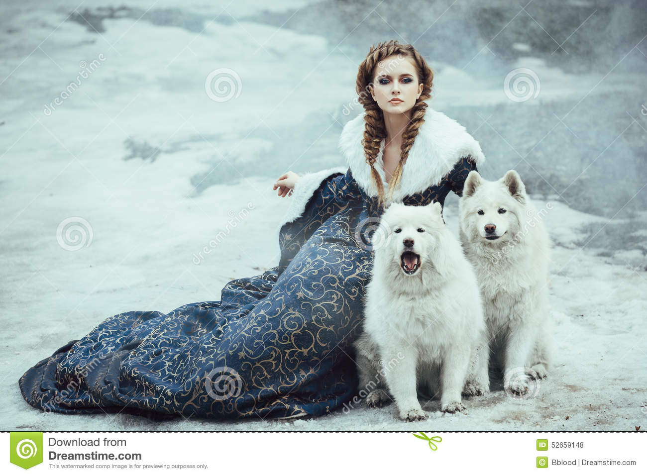 The Woman On Winter Walk With A Dog Stock Photo - Image