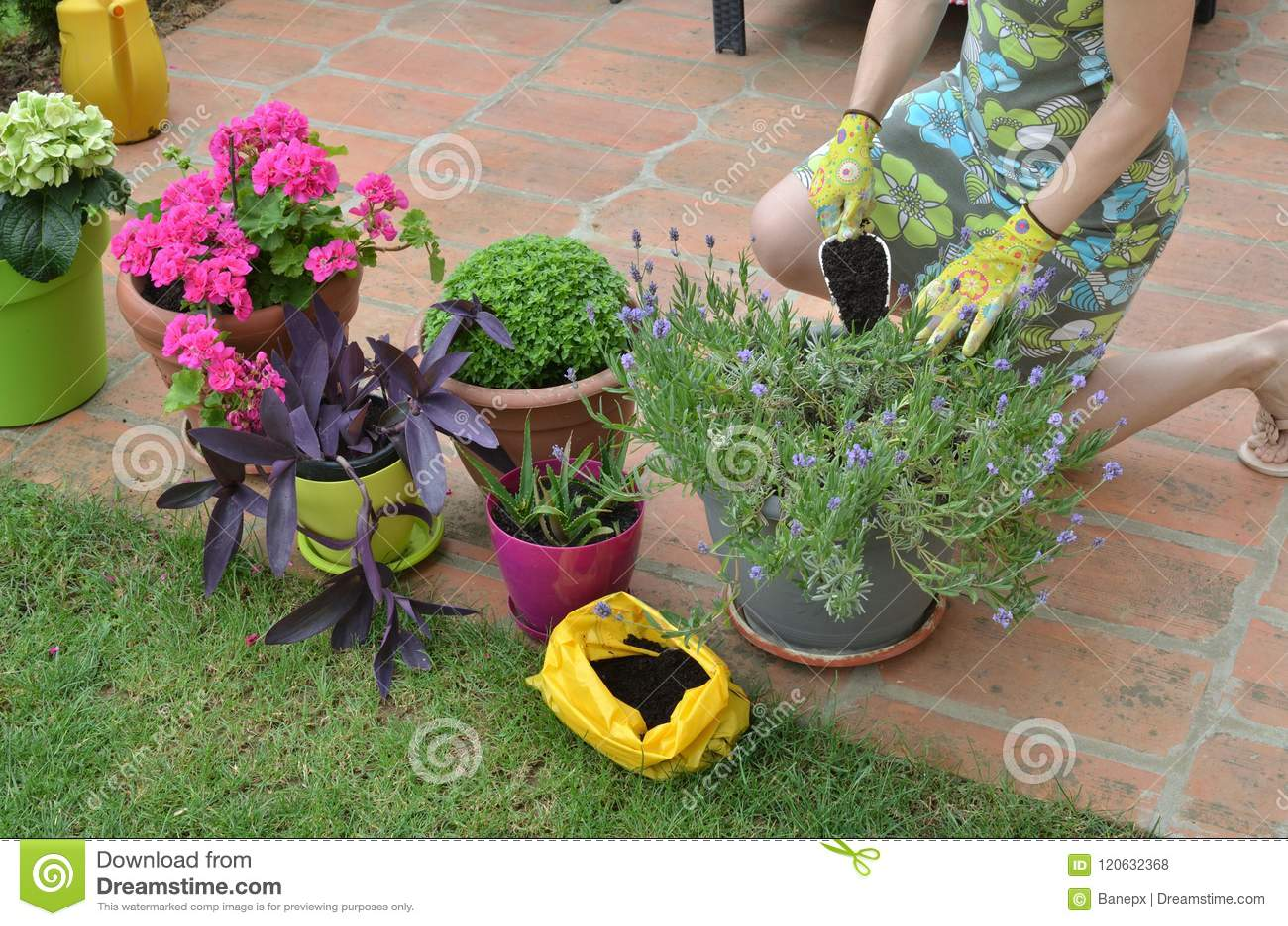 Woman working in a garden