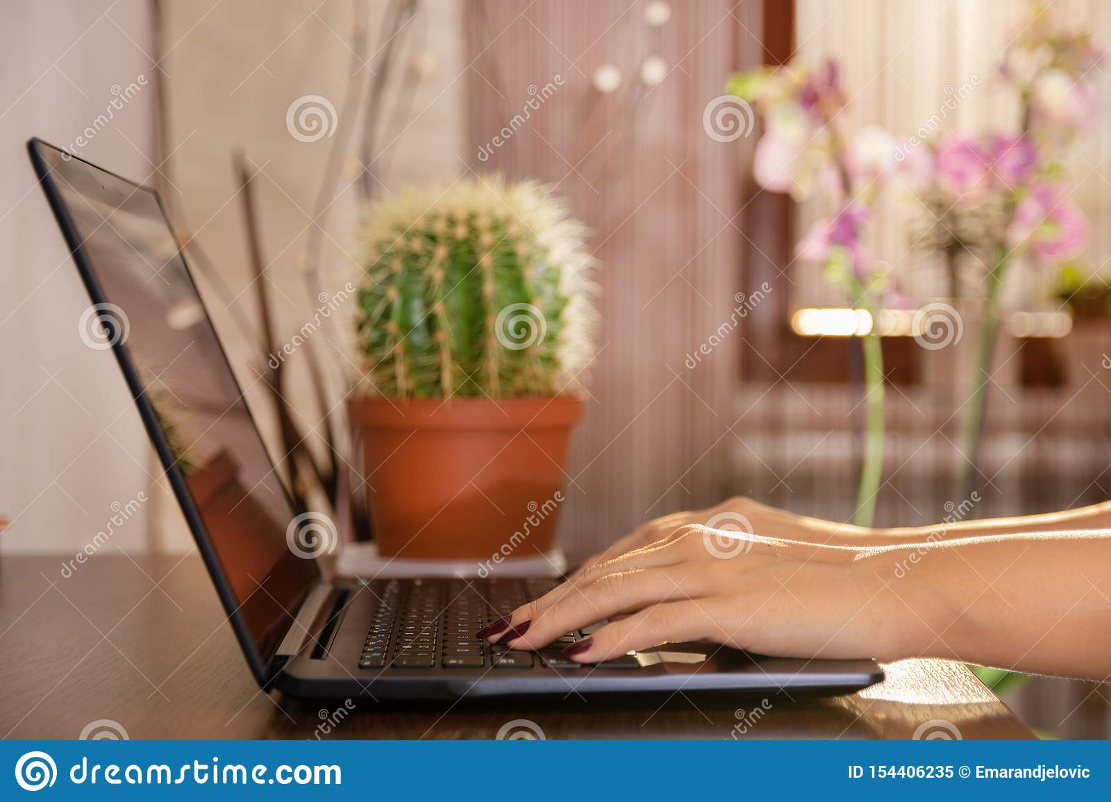 Woman working at home office hand on laptop