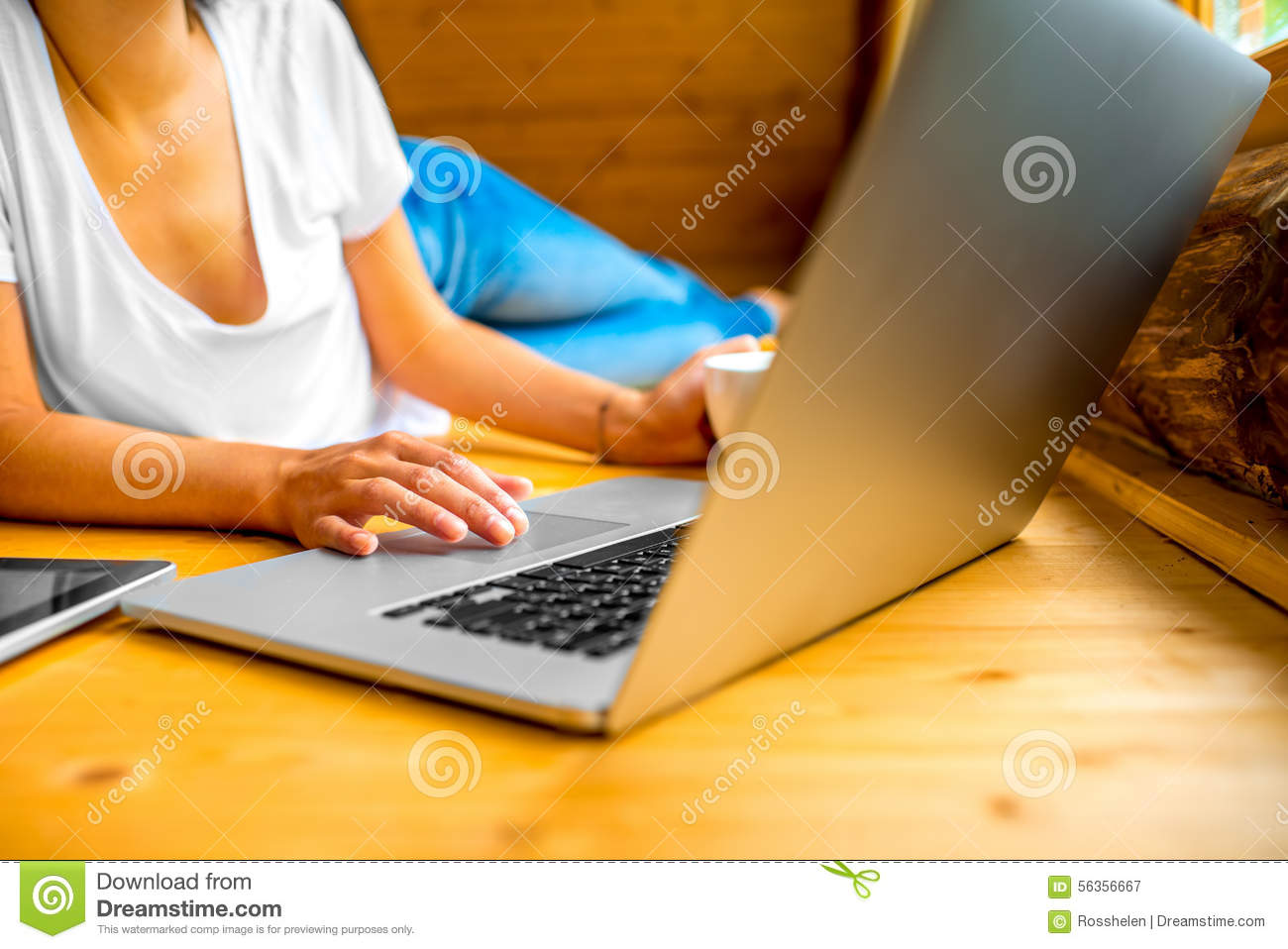 Woman Working With Laptop On The Wooden Floor Stock Image
