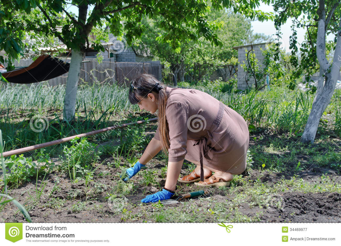 Woman working in the vegetable garden. Woman Working In The Vegetable Garden Royalty Free Stock