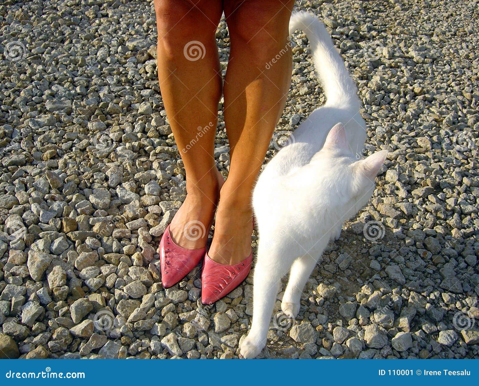 Womans Füße