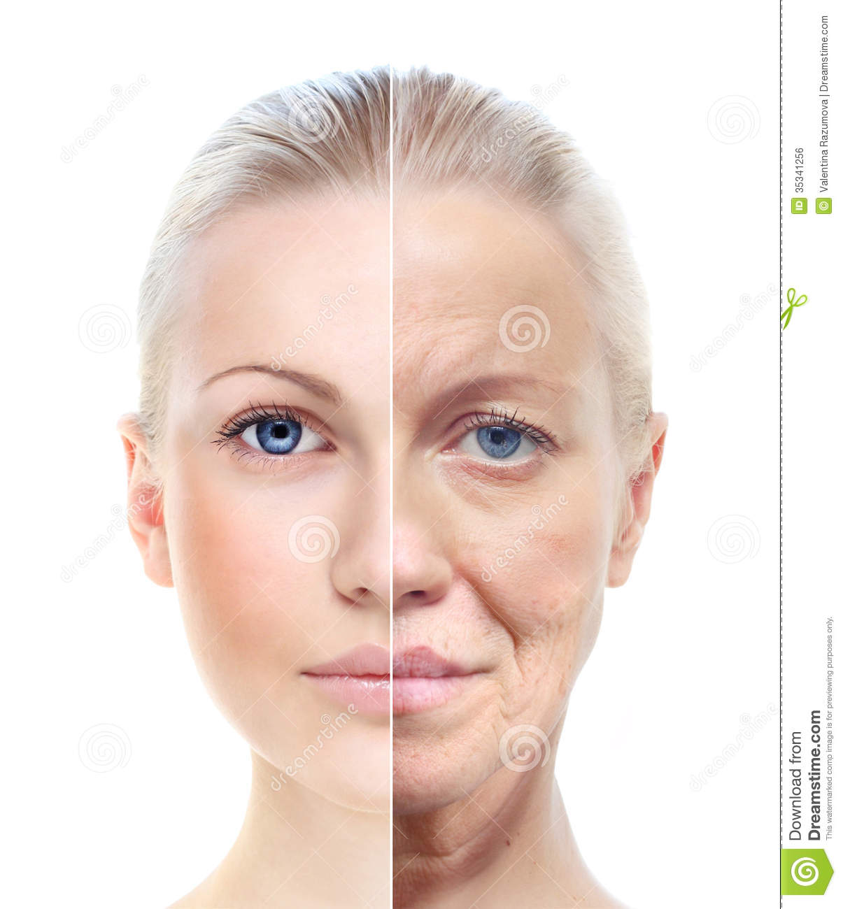 Womans Portrait 20 60 Years Old Royalty Free Stock Image