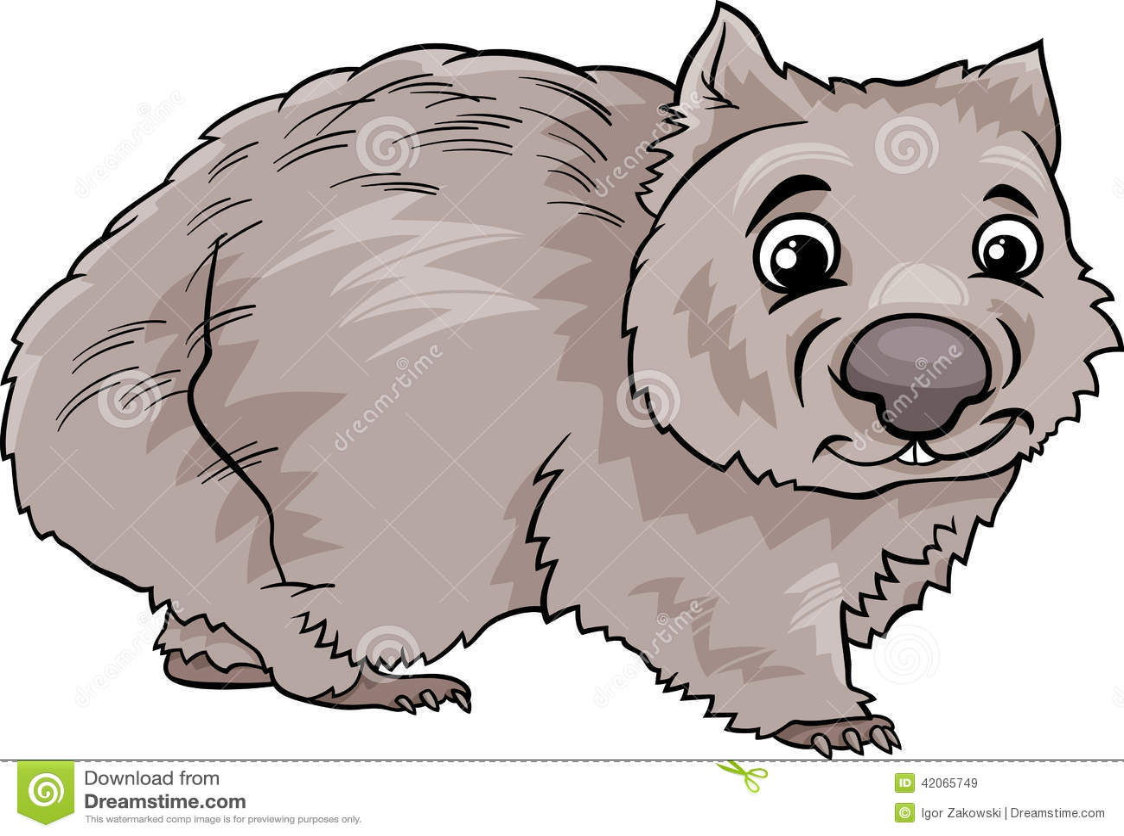 Wombat Animal Cartoon Illustration Stock Vector Image