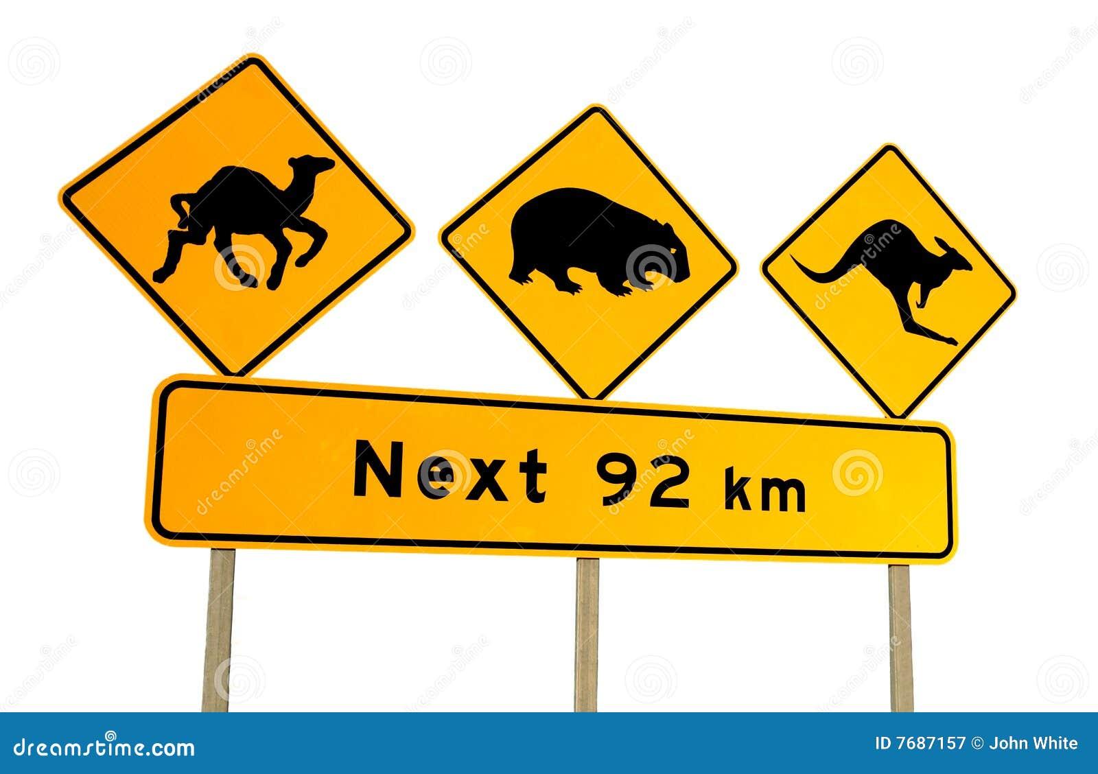 le chameau kängor