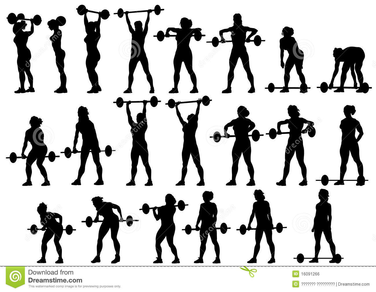 Women With Barbe...Barbell Vector