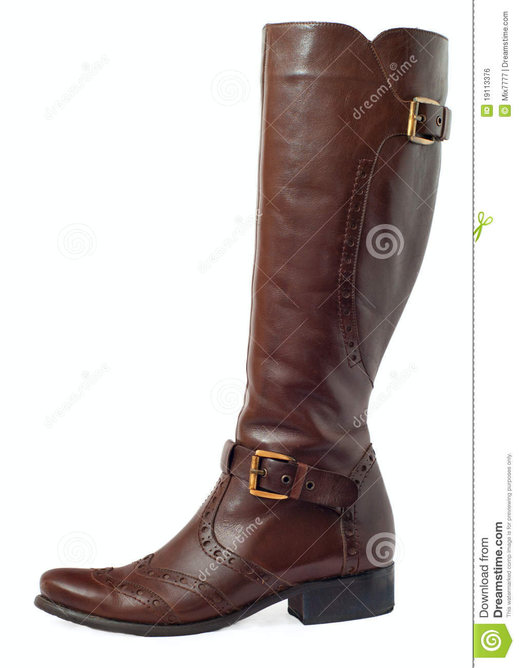 Women Brown Leather Boots Royalty Free Stock Image - Image: 19113376