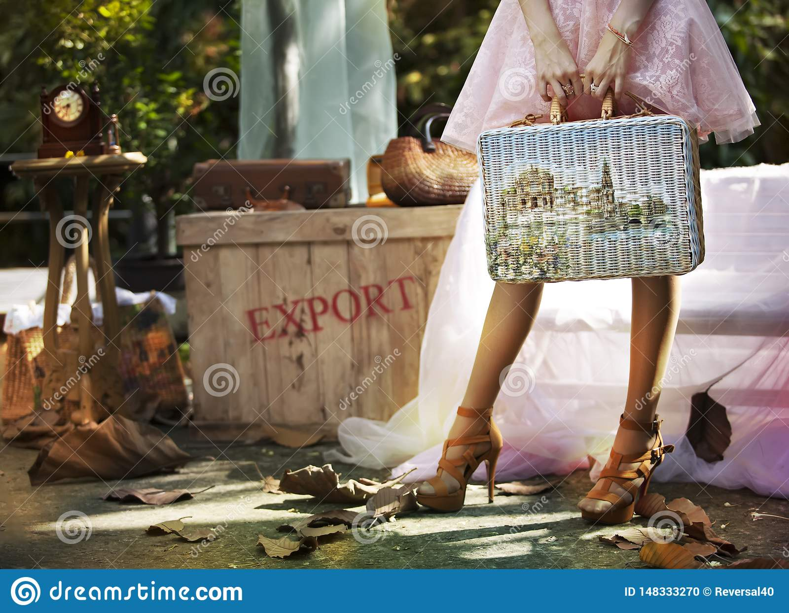 Women carrying luggage to travel