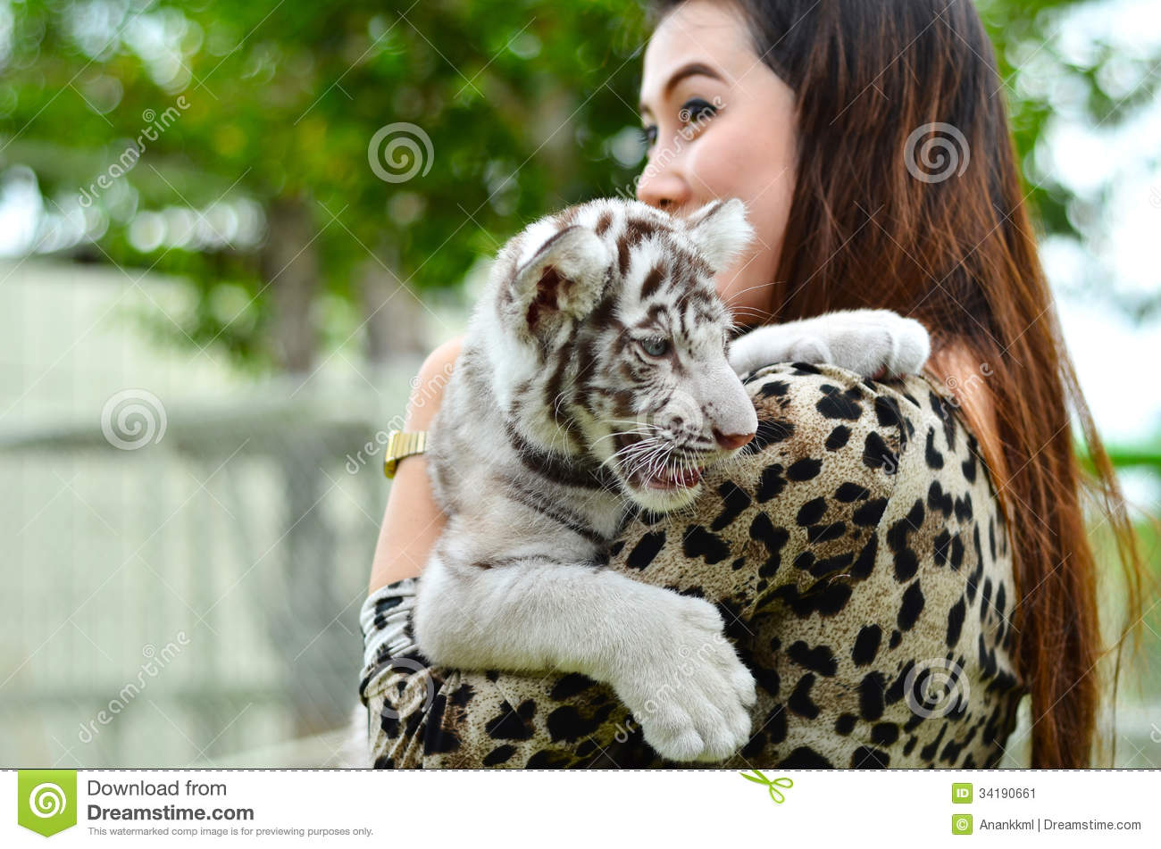 white tiger holding baby - photo #20