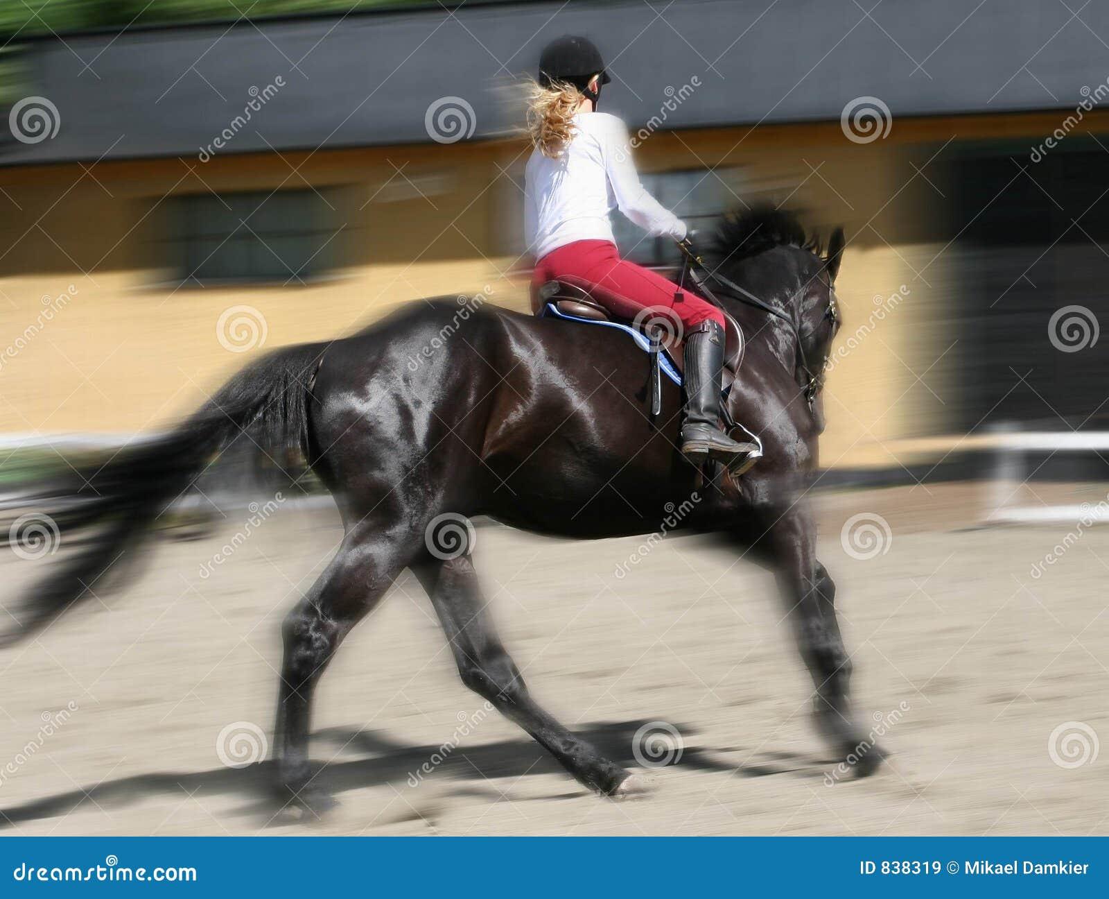 Women riding