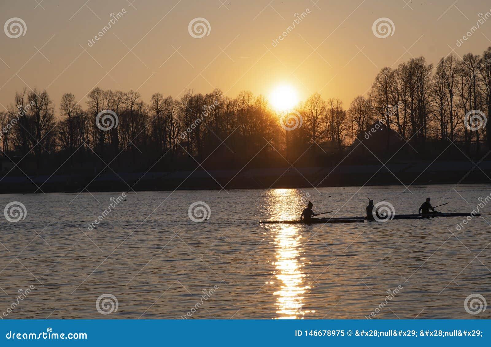 Women rowers at sunset - Milan Idroscalo