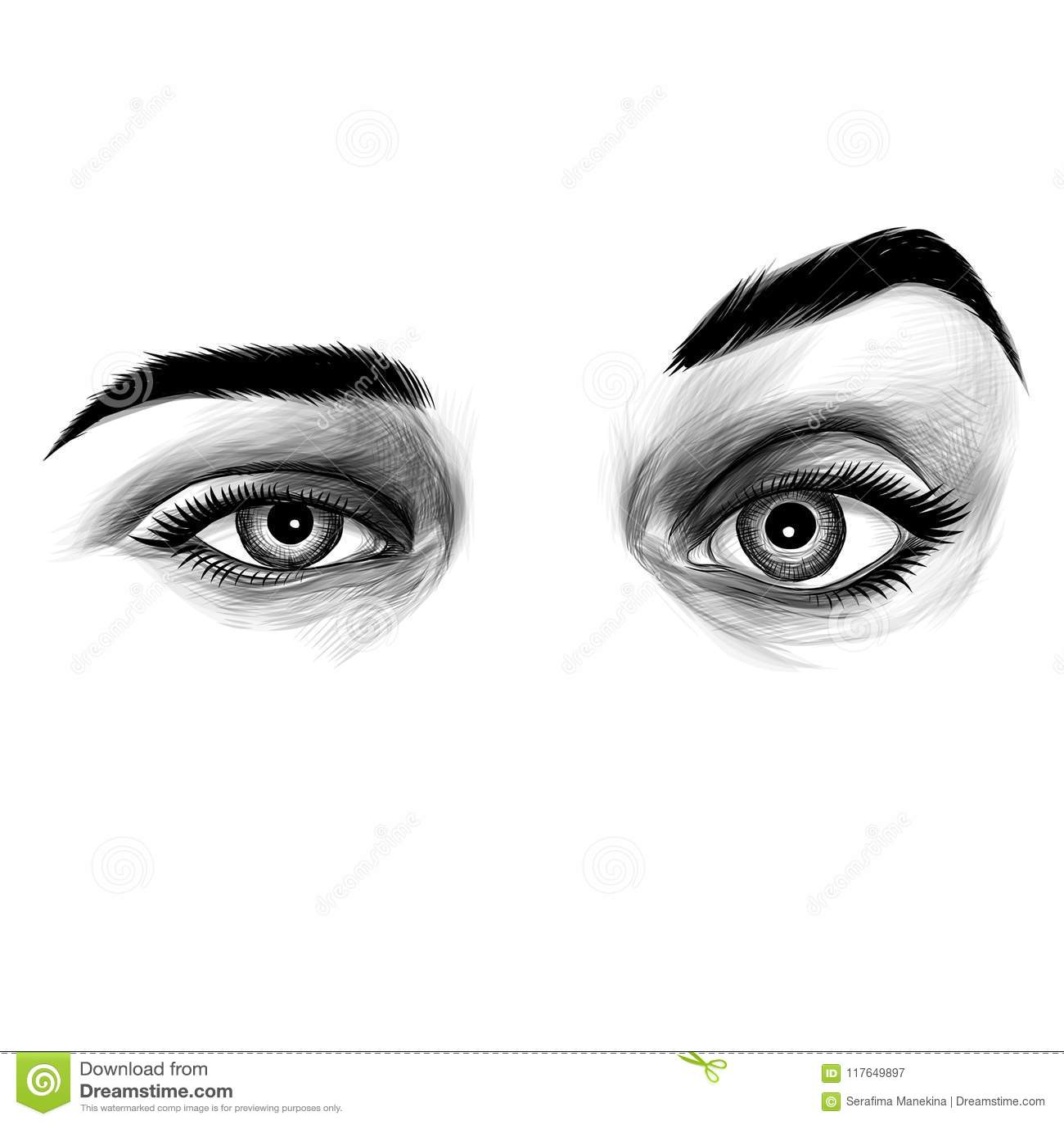 Womens eyes sketch vector graphic stock vector