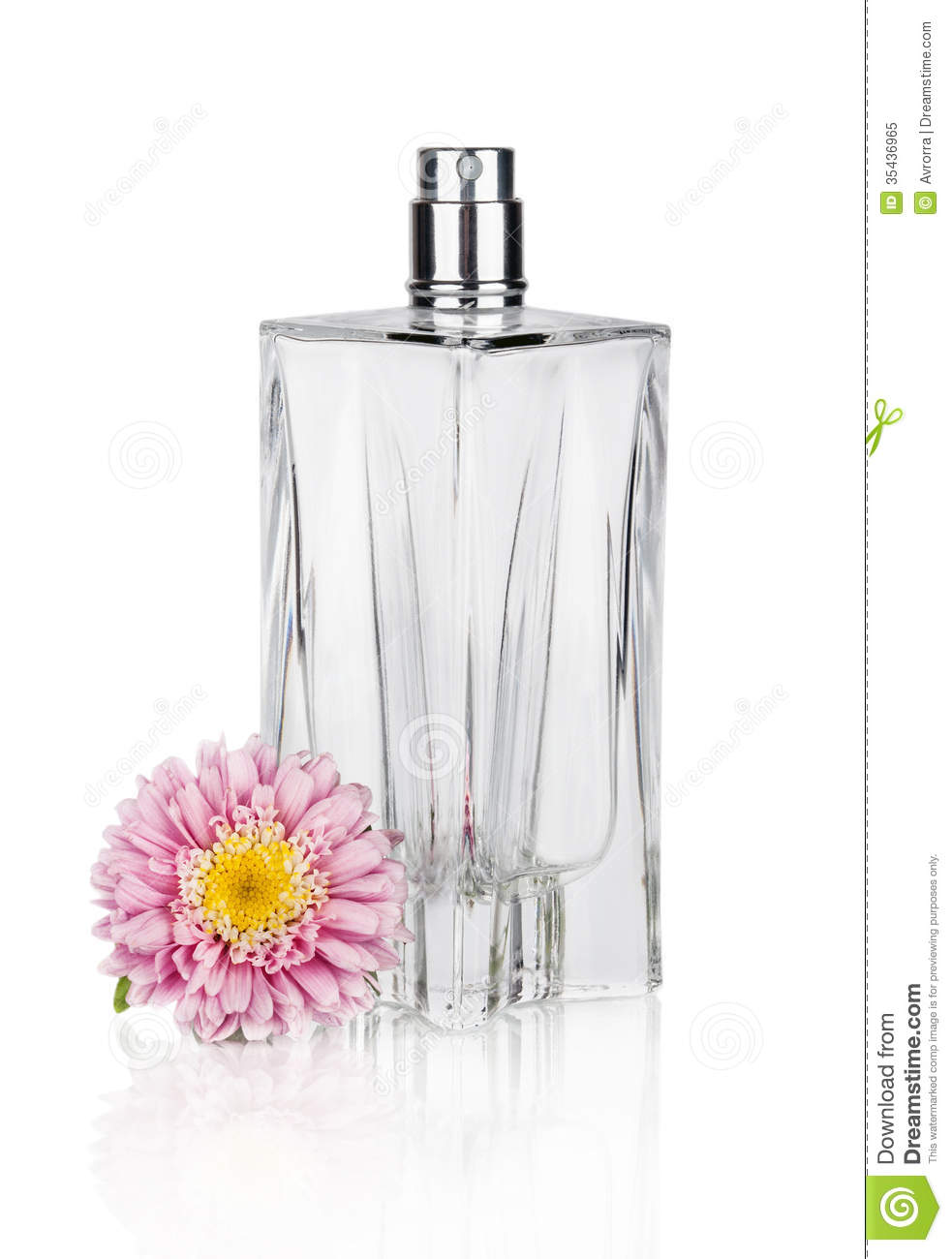 Womens Flower Perfume In Beautiful Bottle Isolated On White Stock