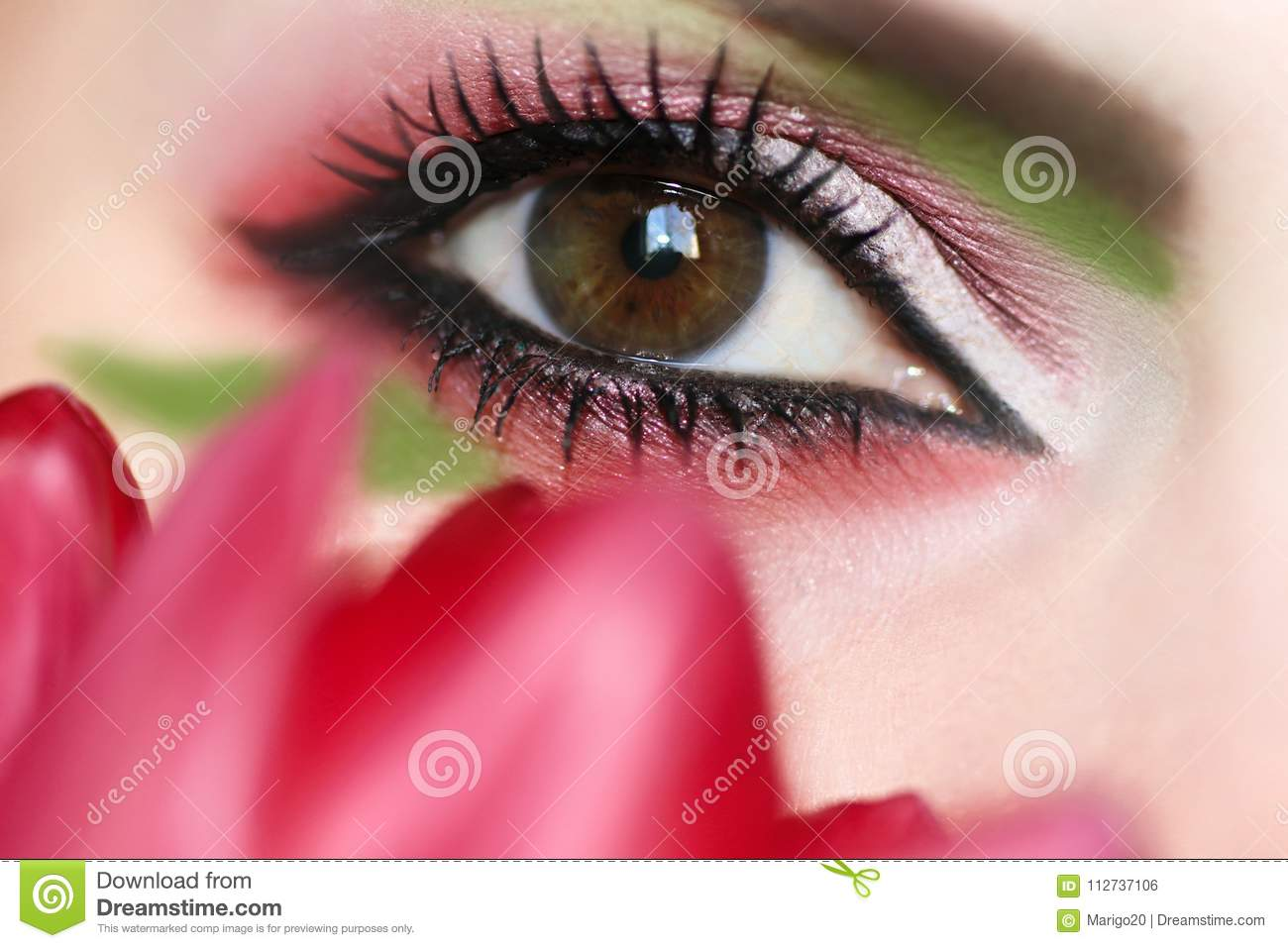 Womens Makeup Brown Green Eyes Stock Photo Image Of Luxury