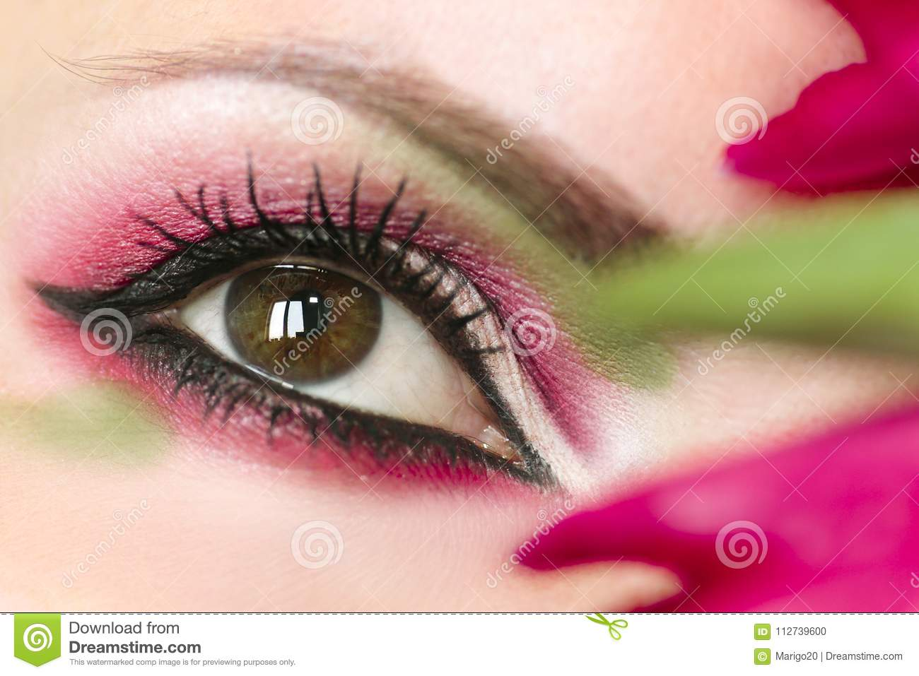 Womens Makeup Brown Green Eyes Stock Photo Image Of Arrow