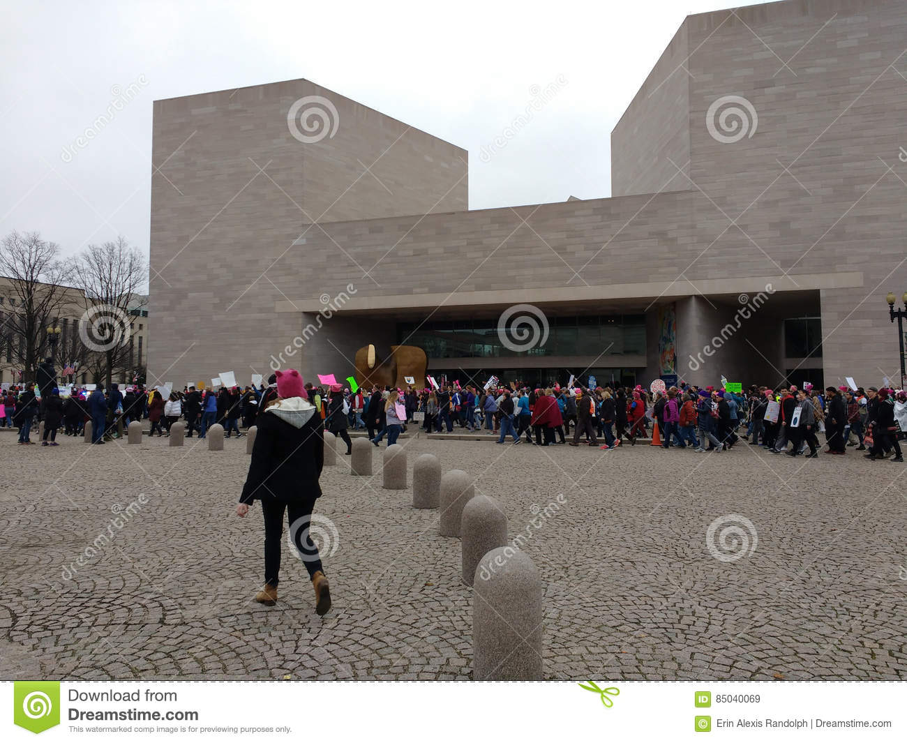 Women`s March, National Gallery of Art East Building, Washington, DC, USA