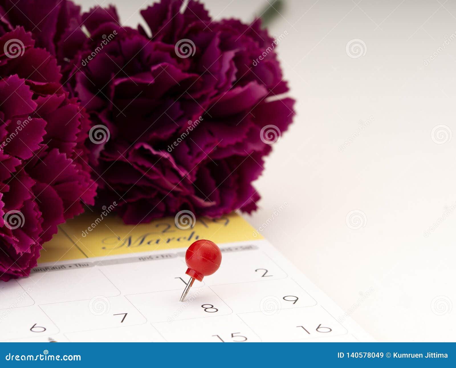 Women' s-Tag auf Kalender mit rotem Stift