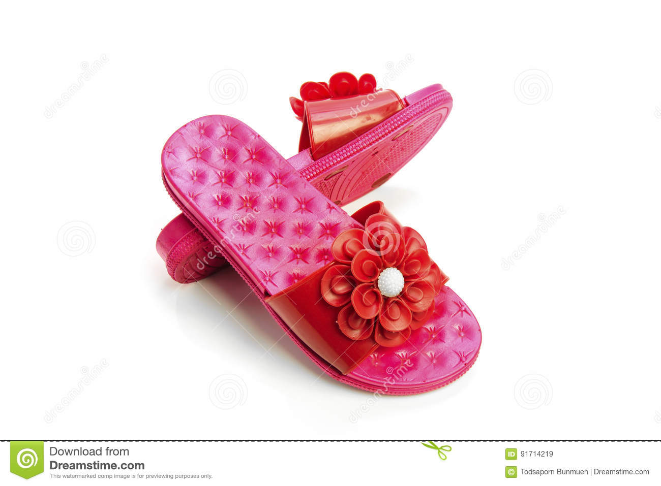 d60252ce13d Women Sandals Isolated On White Background Stock Image - Image of ...