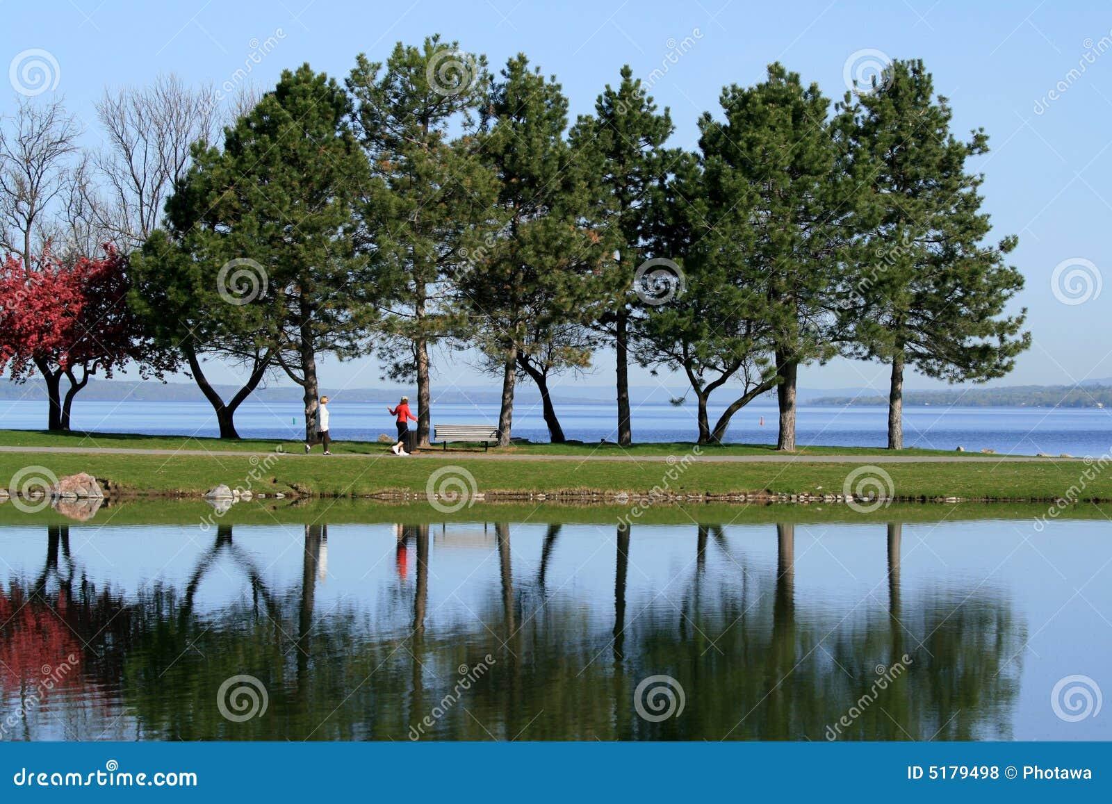 Women Walking Through Park in Spring