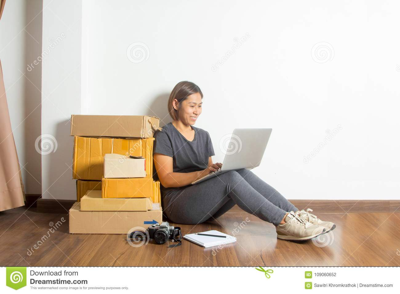 Women Working Laptop Computer From Home Stock Photo - Image of ...