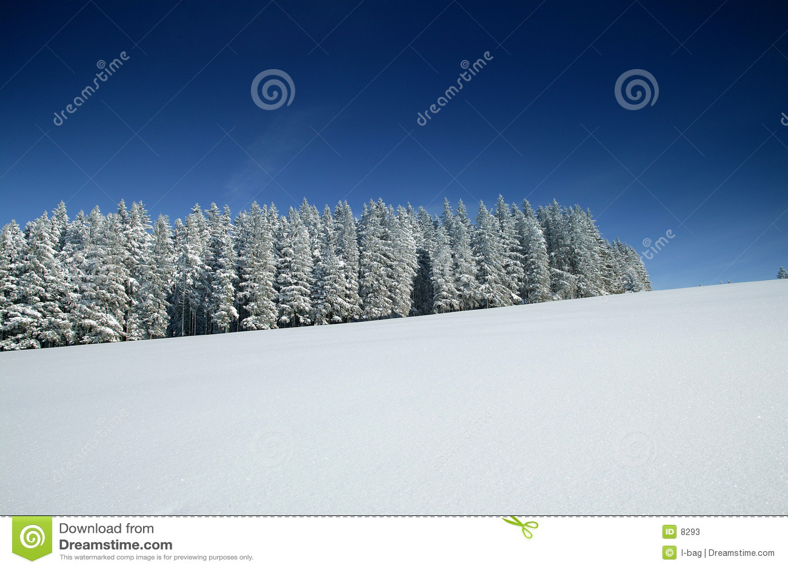 Wonder van de winter wereld