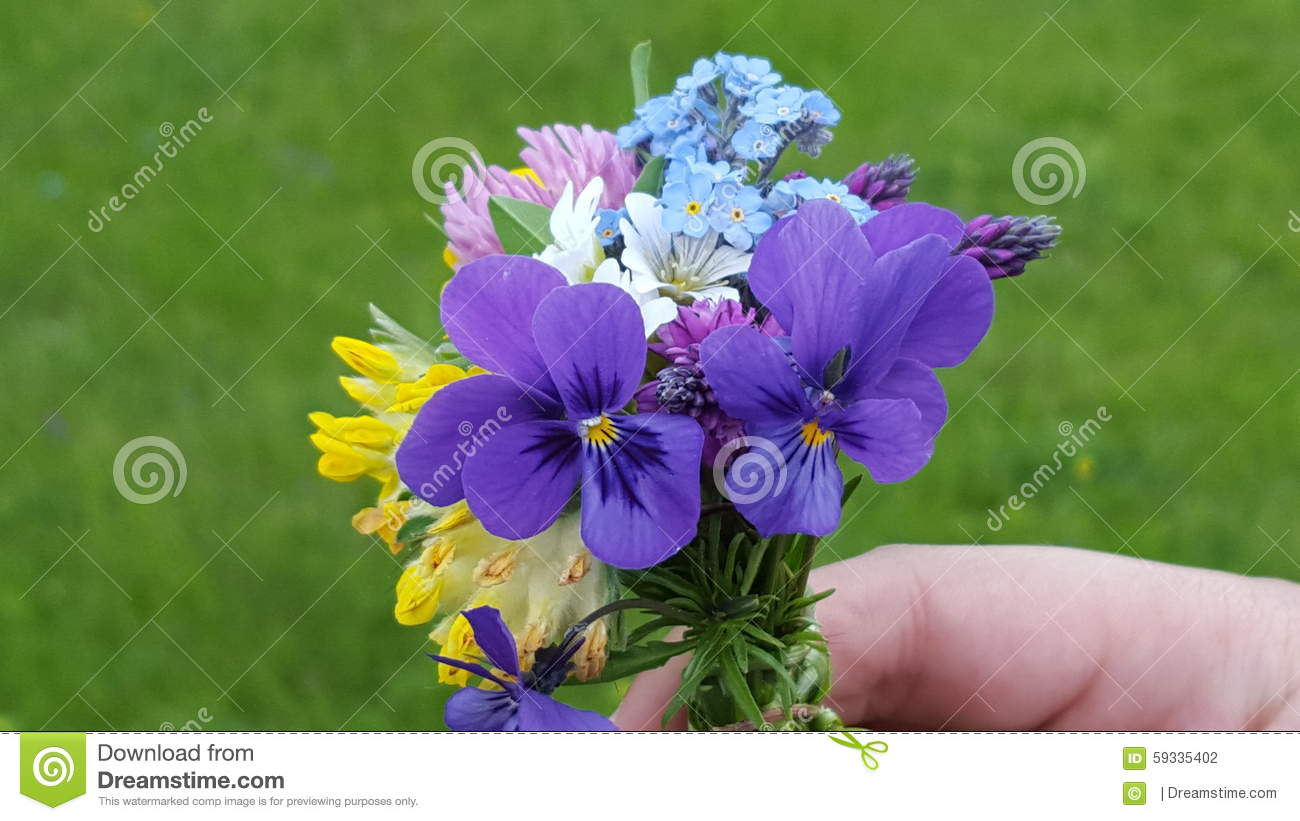 Wonderful Bouquet Of Small But Colorful Mountain Flowers Stock Photo ...
