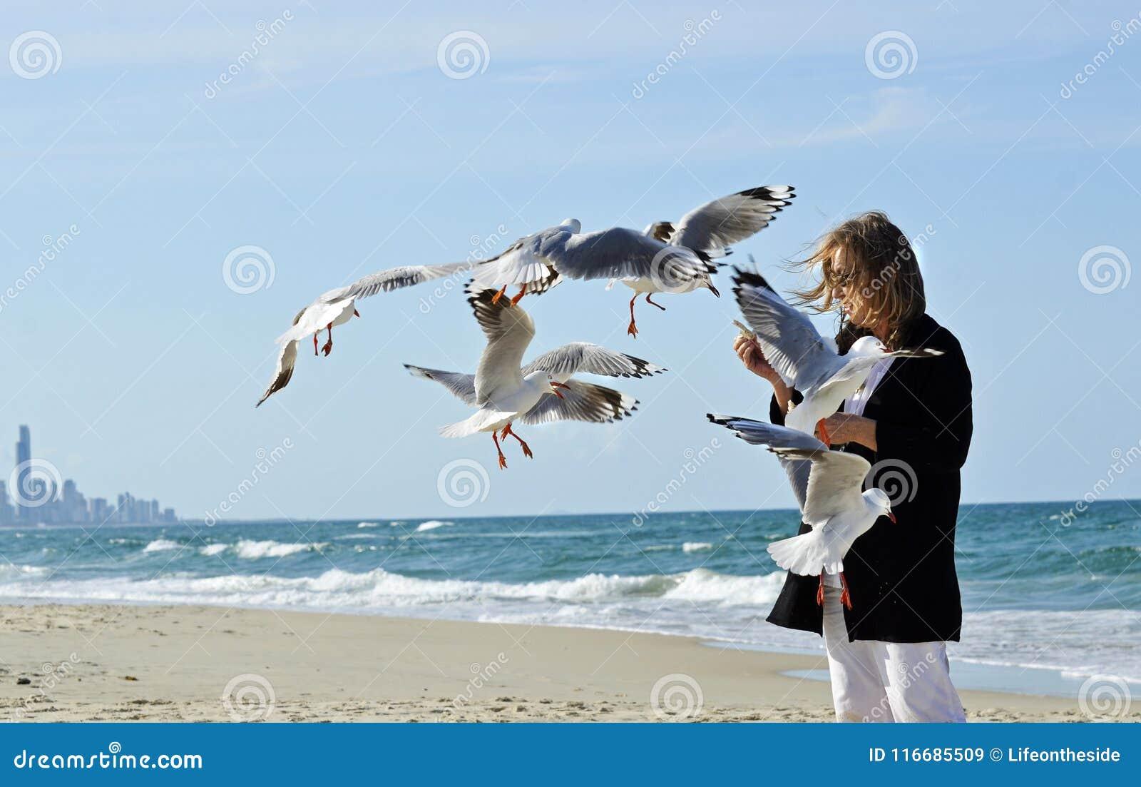 Happy healthy mature woman hand feeding seagulls birds on beach