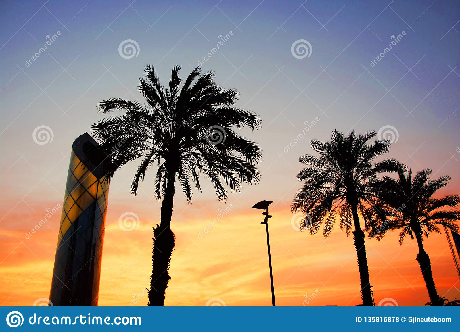 Looking the Peruvian sunset thrue the palm trees