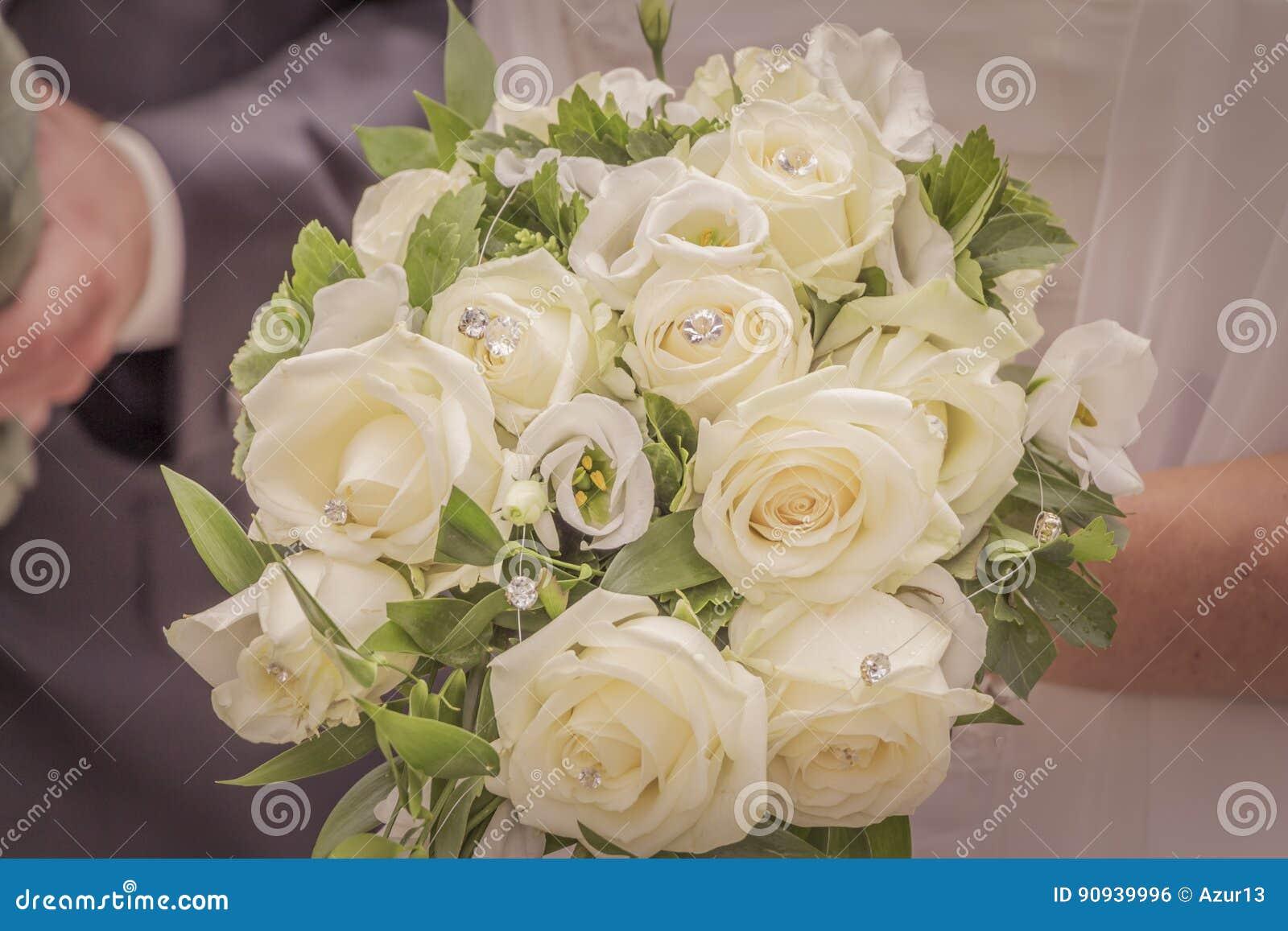 Wonderful Roses Stock Photography | CartoonDealer.com ...