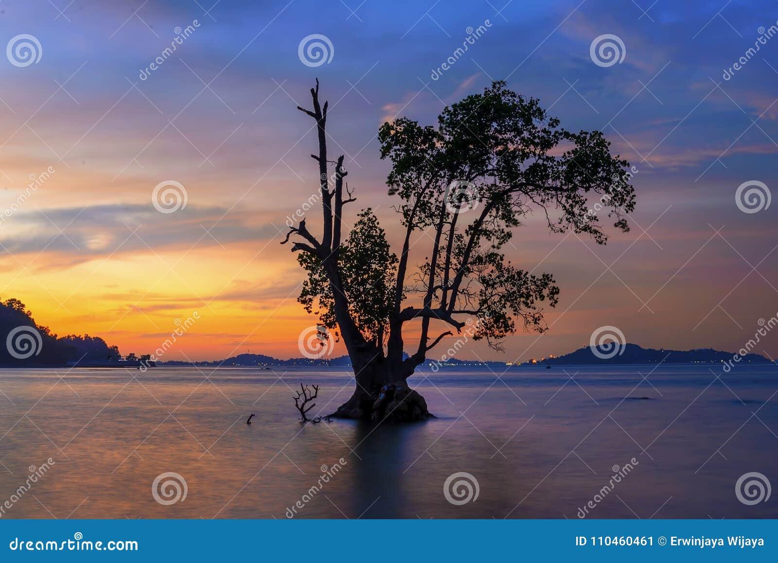 Wonderfull Indonesien för solnedgång Moment5 Batam Bintan