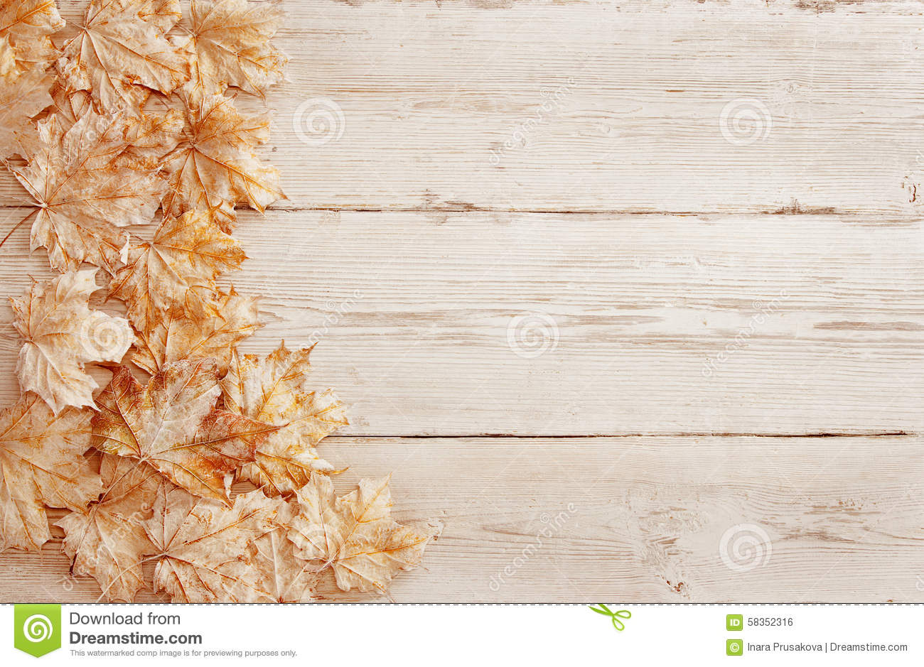 Wood Background White Leaves Wooden Grain Texture Plank