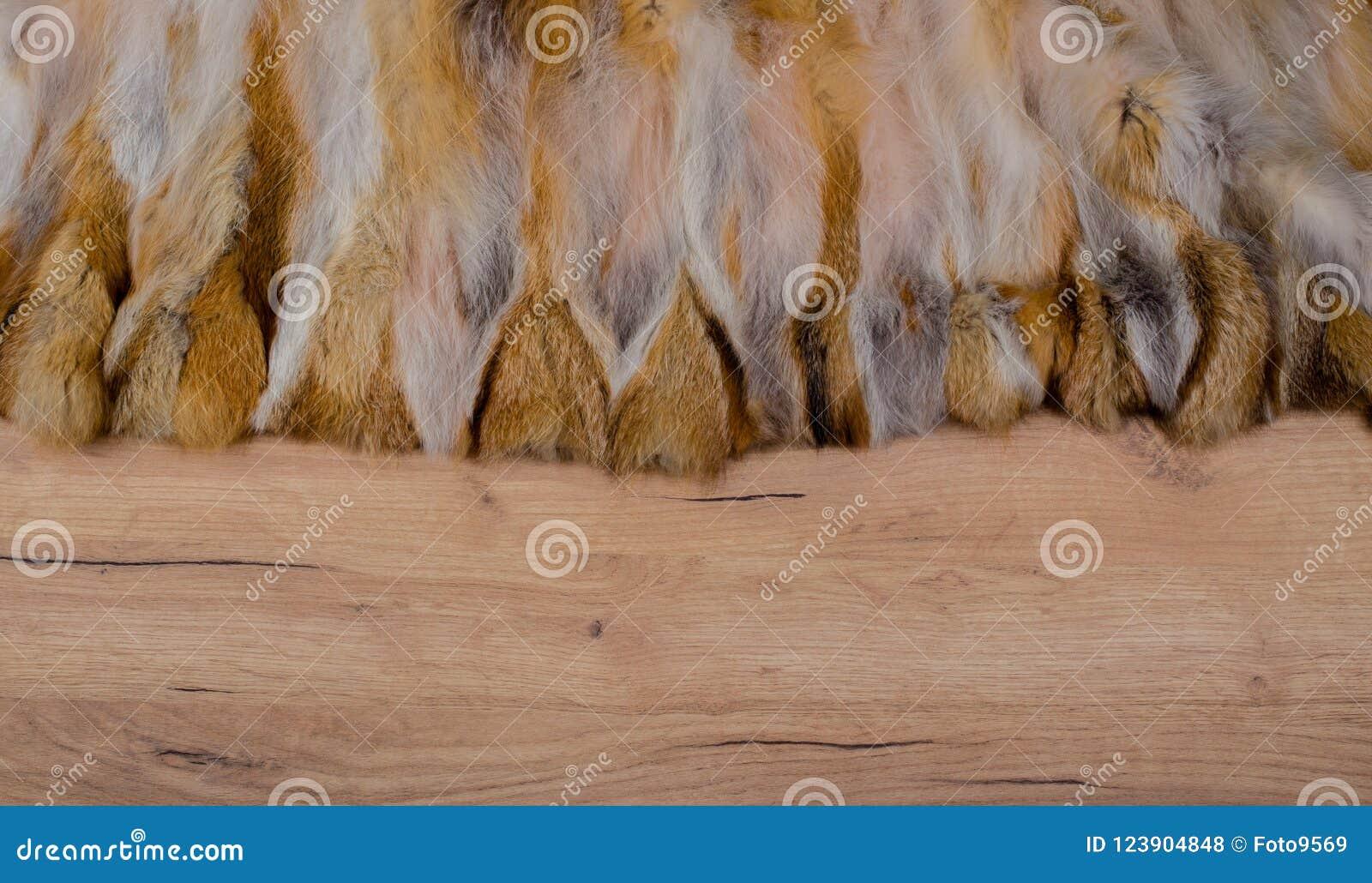 Wood bakgrund med pälskanten som textur och bakgrund för att komponera