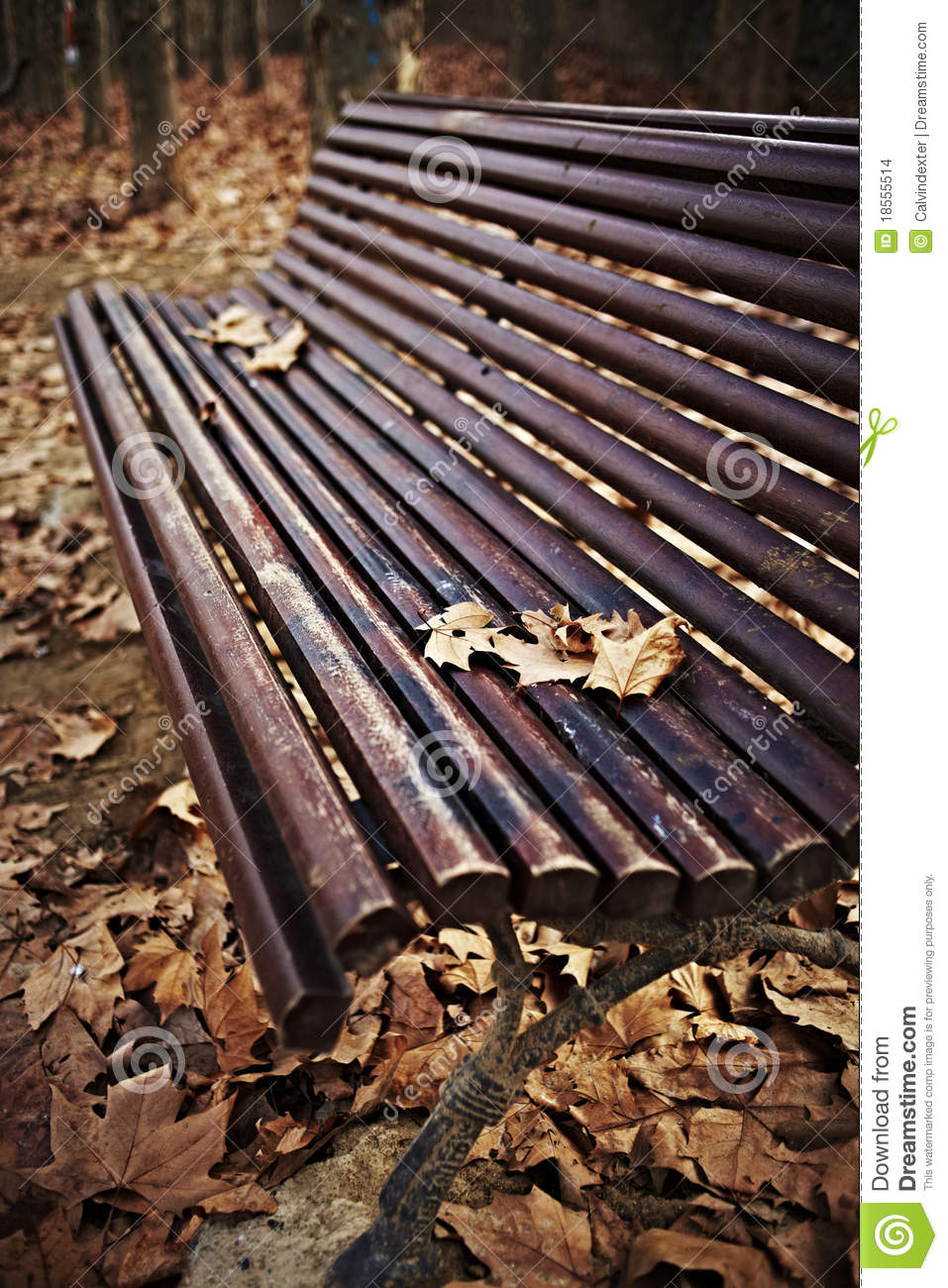 autumn leaves on bench - photo #24