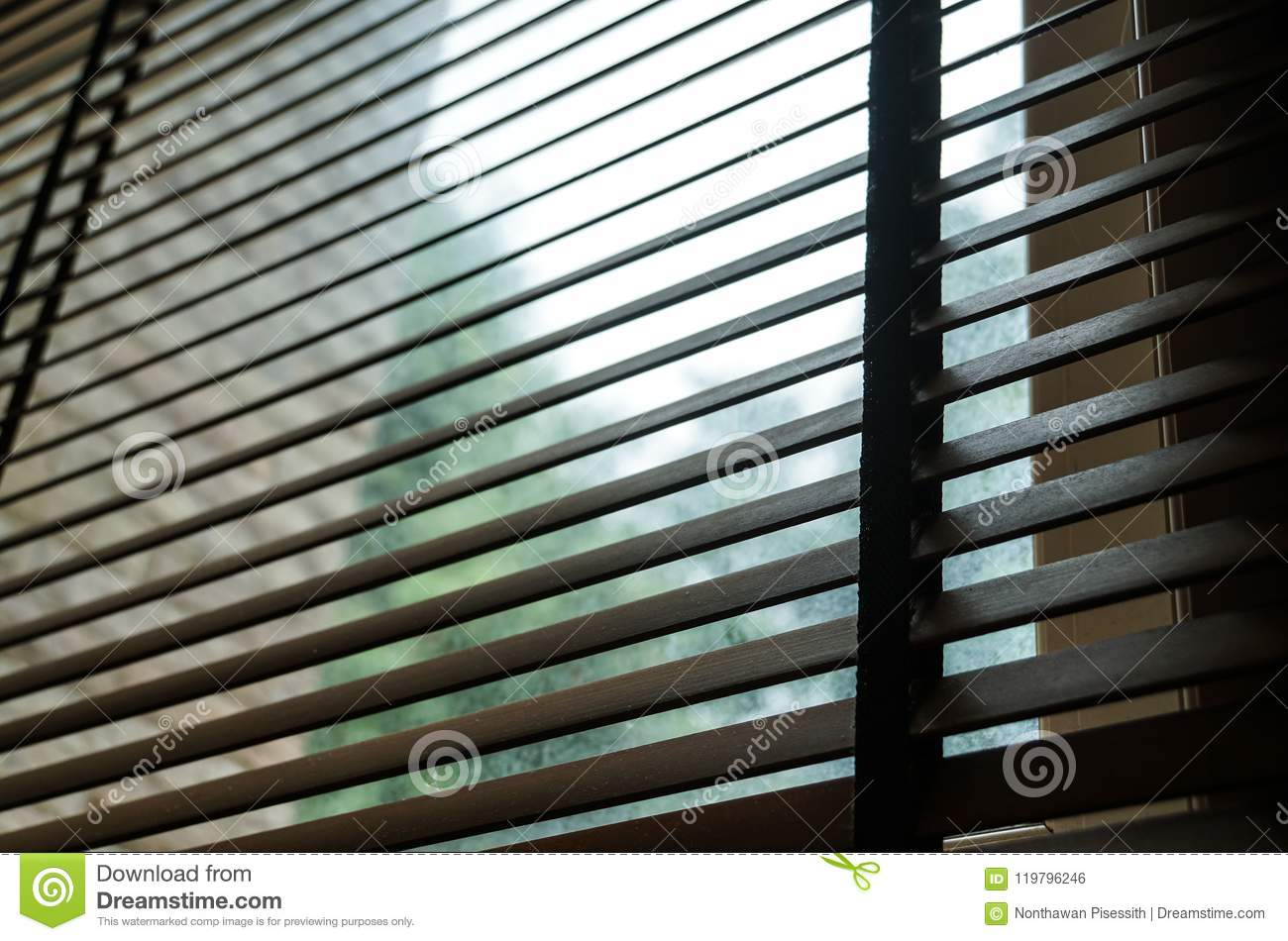 Wood Blind Shade Curtain And Shadow Tree Background Stock Photo