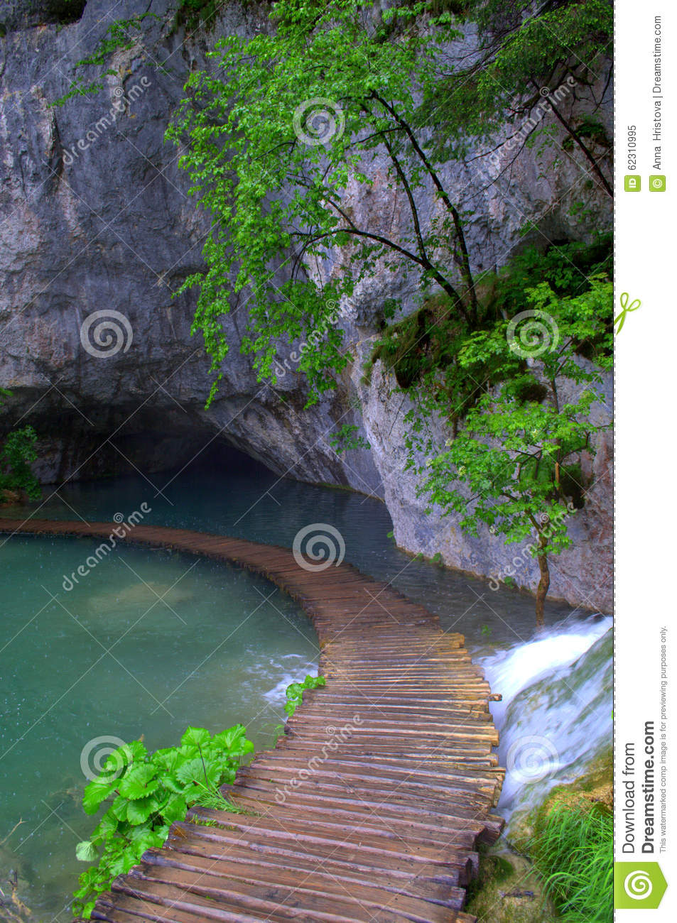 Wood boardwalk on lake stock image. Image of alley, nature ...