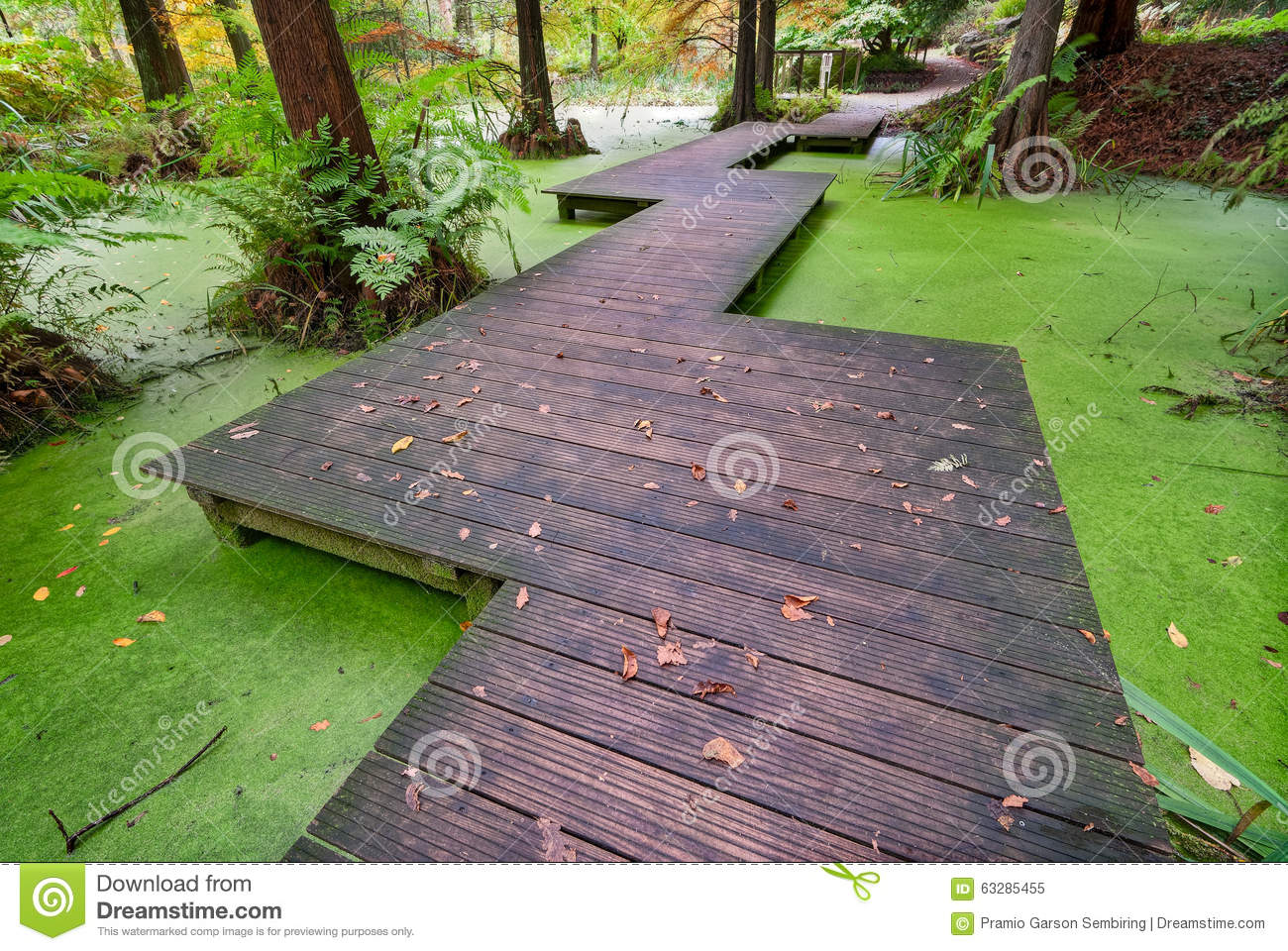 Wood bridge over small pond stock photo image 63285455 for Fish pond bridges
