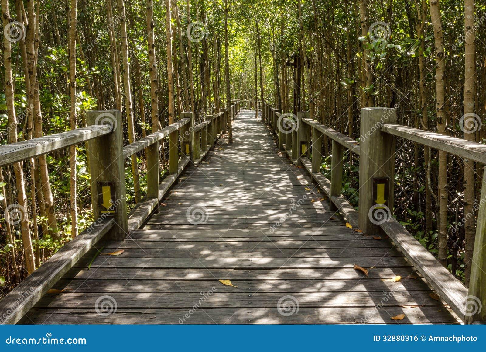 Wood Bridge Pathway Royalty Free Stock Image - Image: 32880316