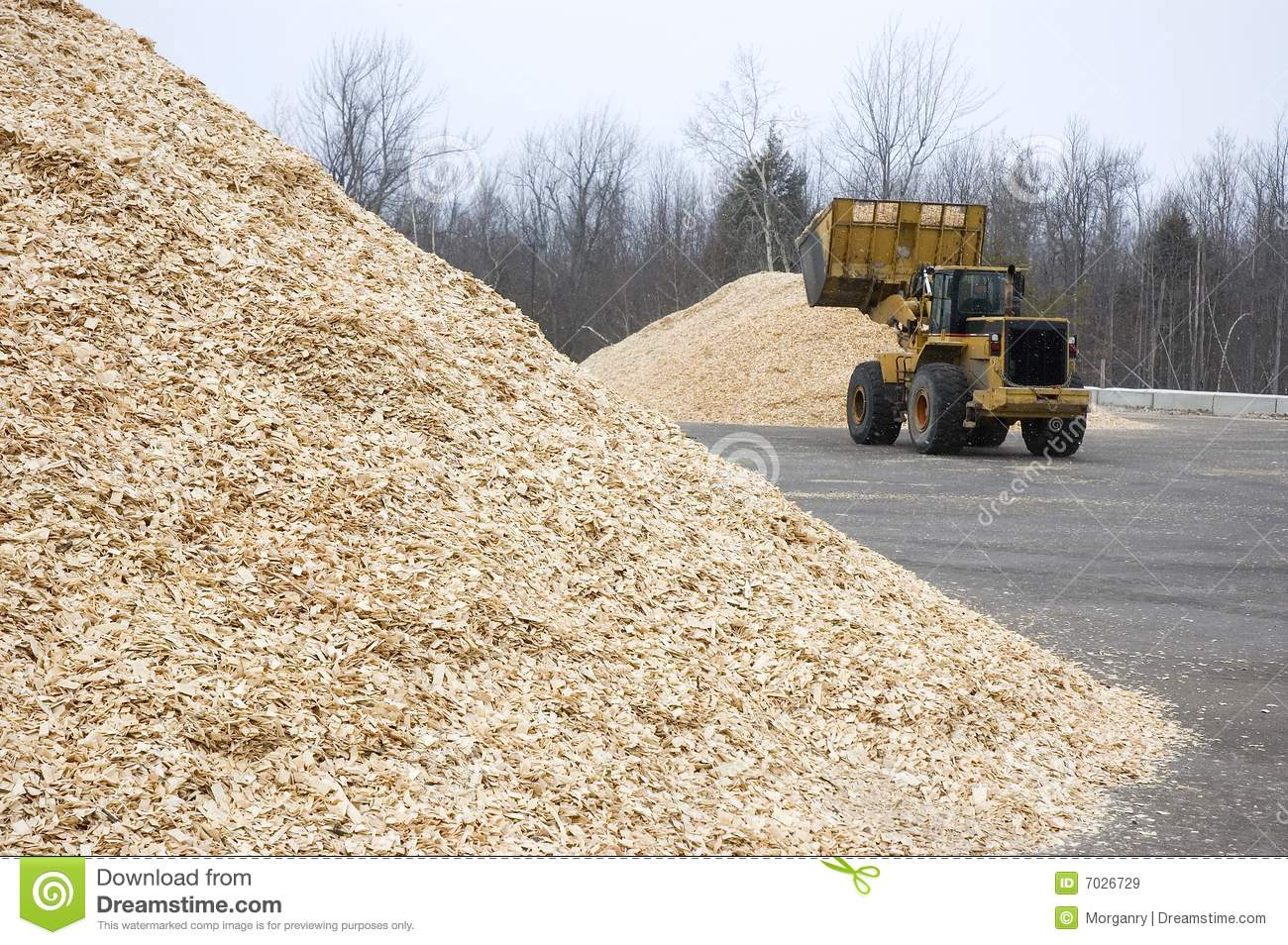 Wood chips storage lot used for biofuel royalty free