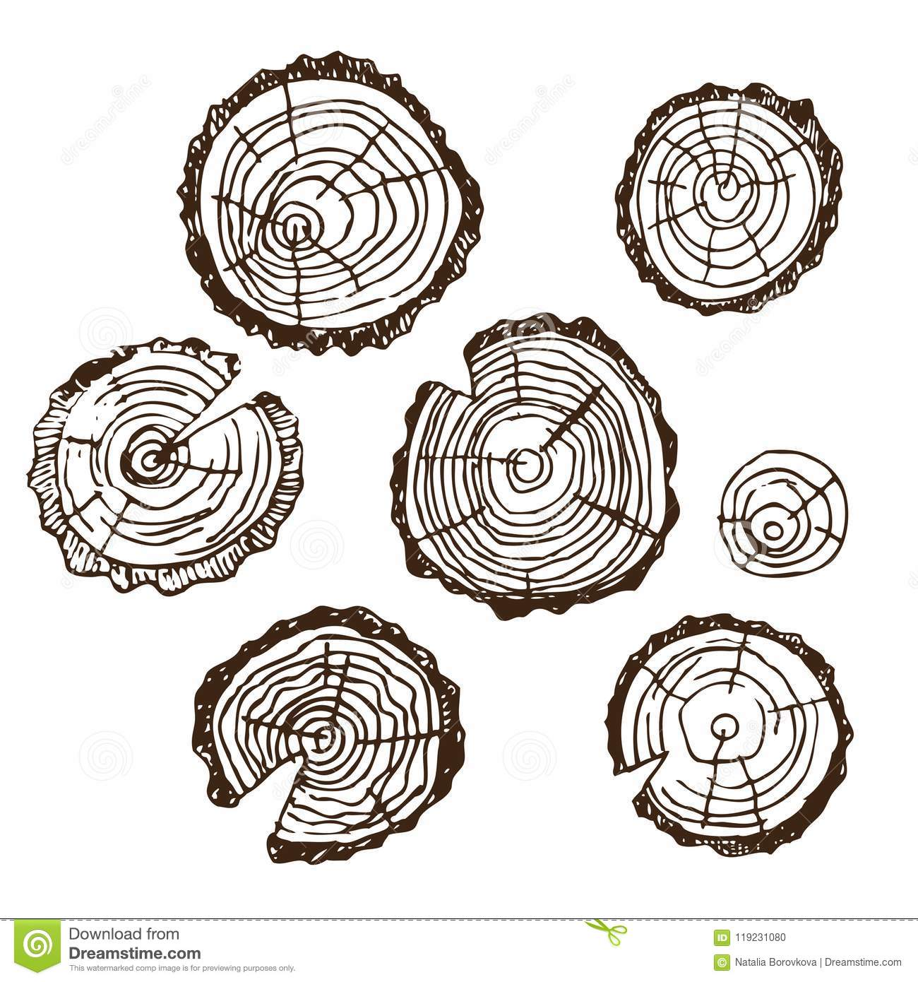 Wood Cut, Wood For Design Patterns, Frames, Backgrounds, For Russian ...