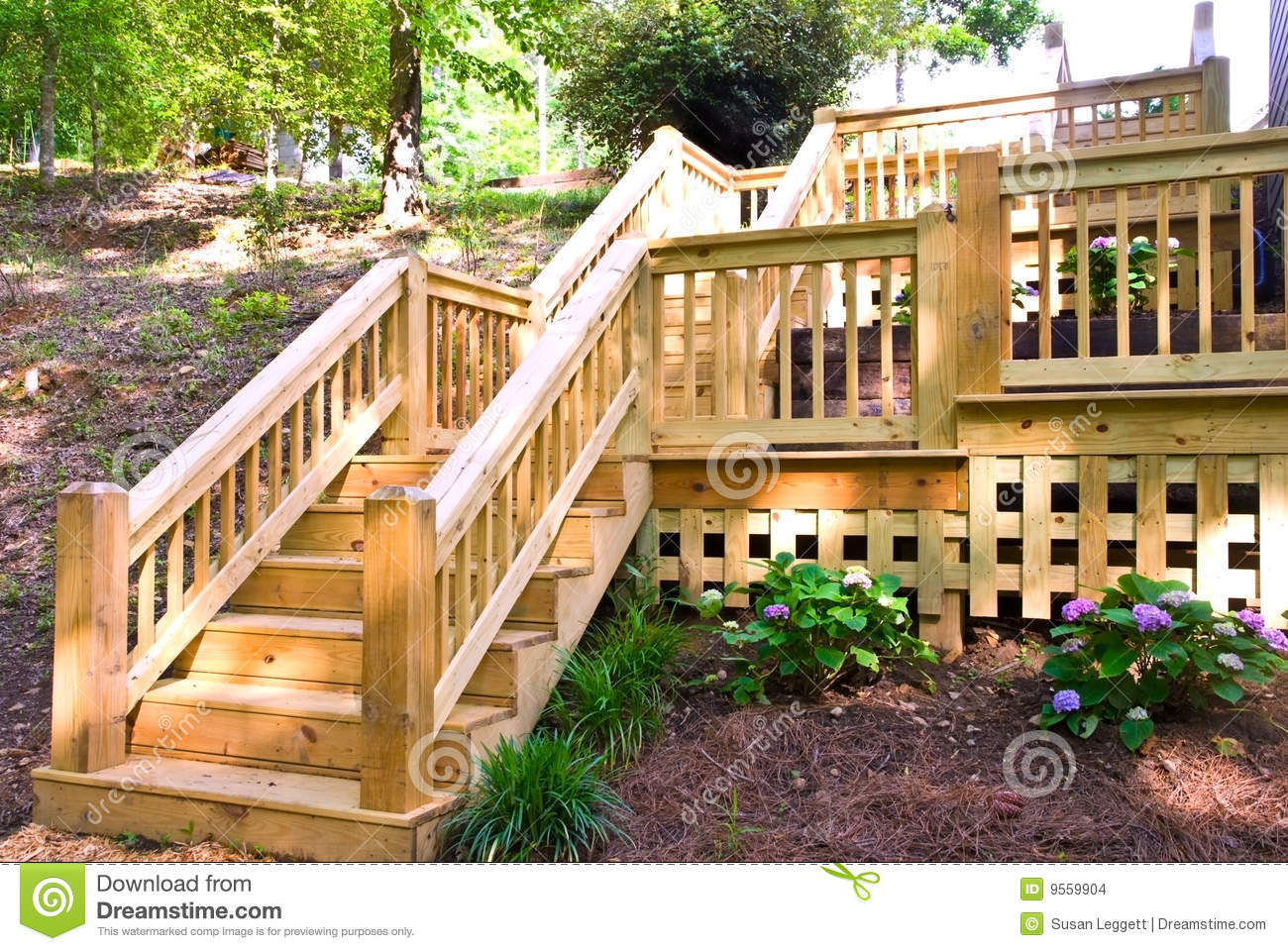 wood deck steps stock photo image of nature decking 9559904