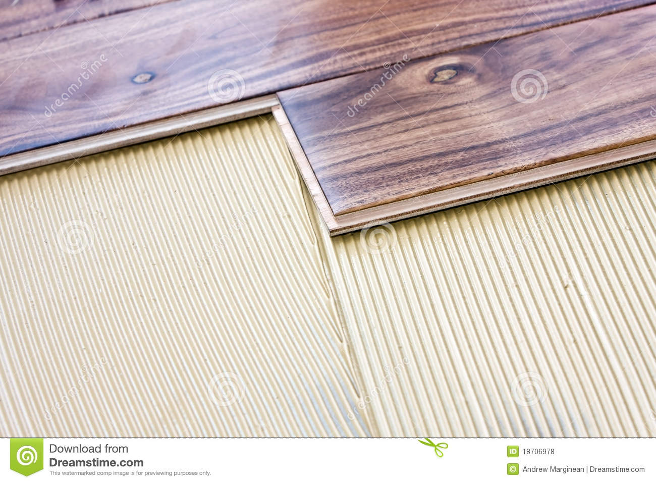 Wood Flooring Installed With Glue Royalty Free Stock