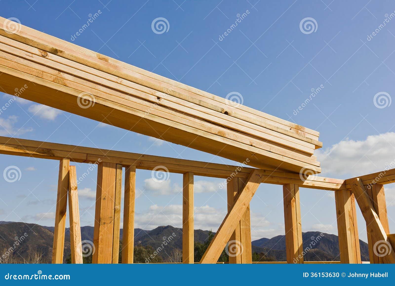 Wood Frame Construction : Wood Frame Construction : Building Wood Frame Construction