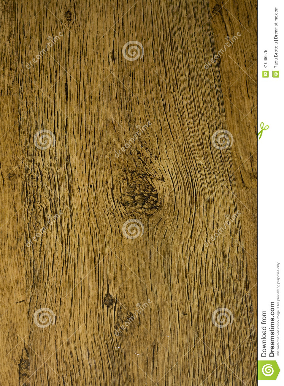 wood grain royalty free stock photo image 31068975
