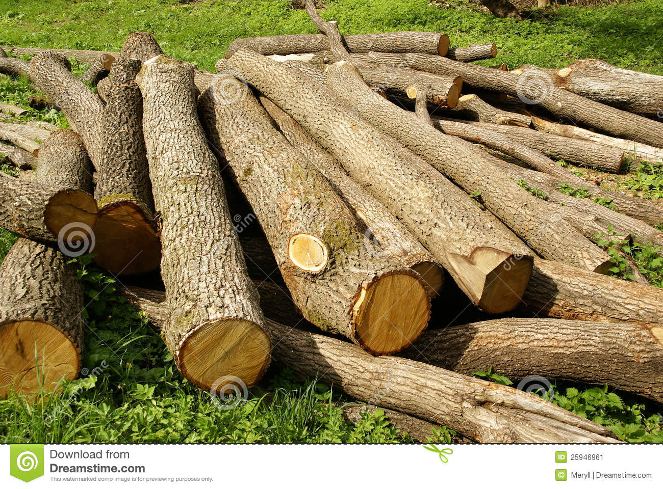 Wood logging logs stock image. Image of stack, forestry - 25946961