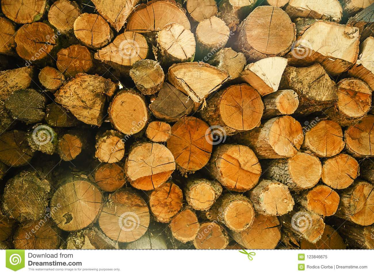 Download Pile Of Wood Logs Storage For Industry Stock Image   Image Of  Stack, Firewood