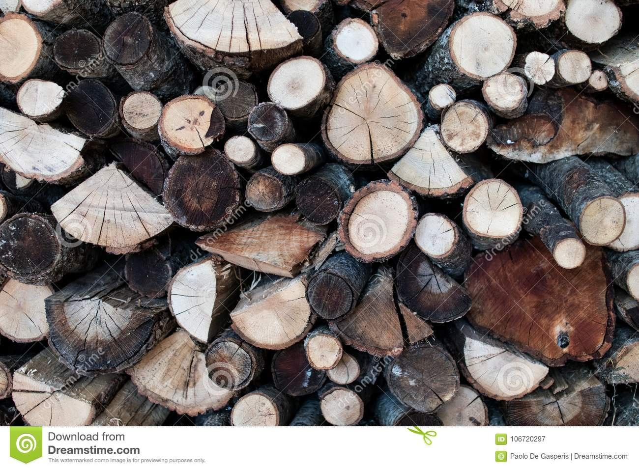Wood Logs Cut With The Visible Grain Wood For Winter With