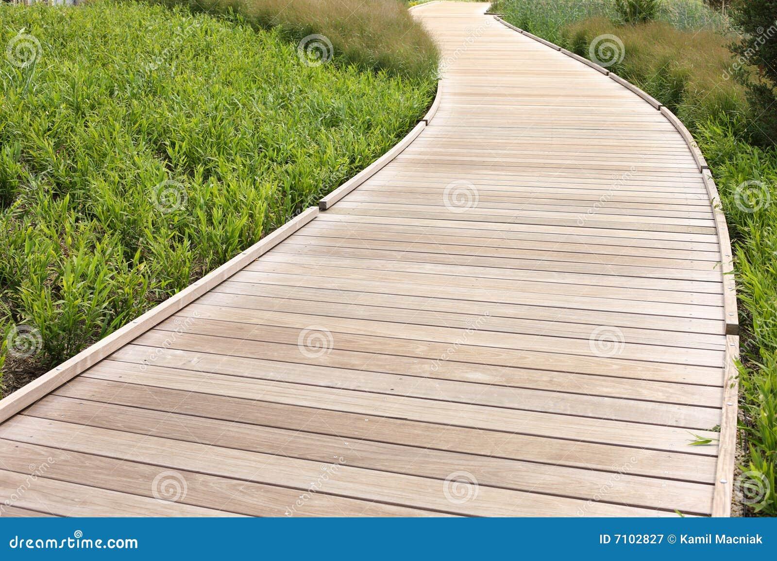 Download Wood path stock image. Image of natural, dirtroad, beautiful - 7102827