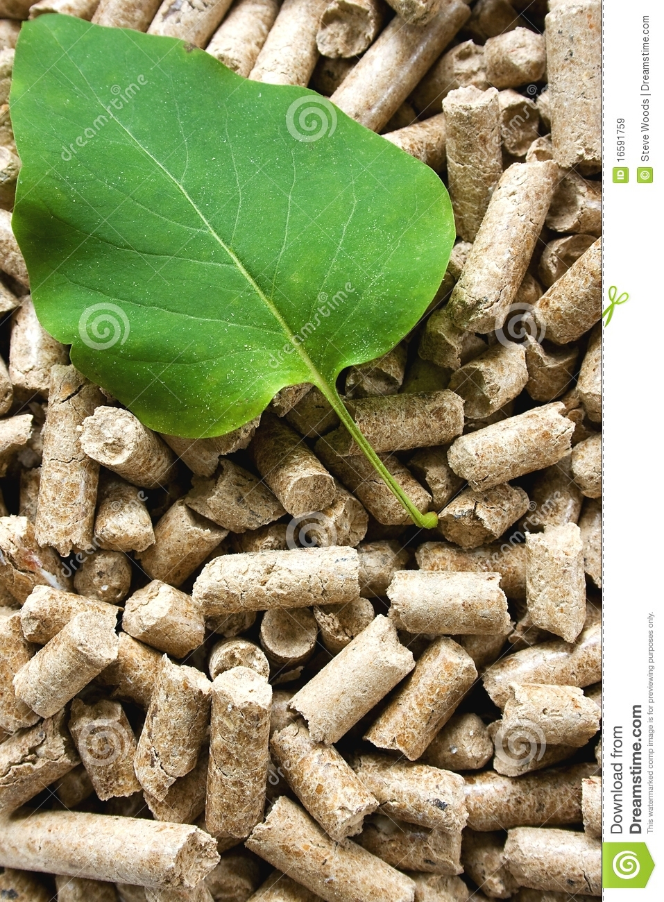 Wood Pellets Amp Green Leaf Stock Image Cartoondealer Com