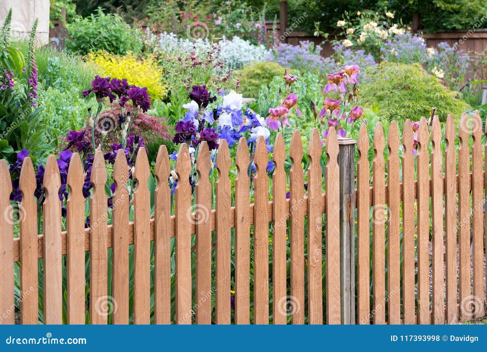 Picket Fence In Backyard Flower Garden Stock Photo Image Of